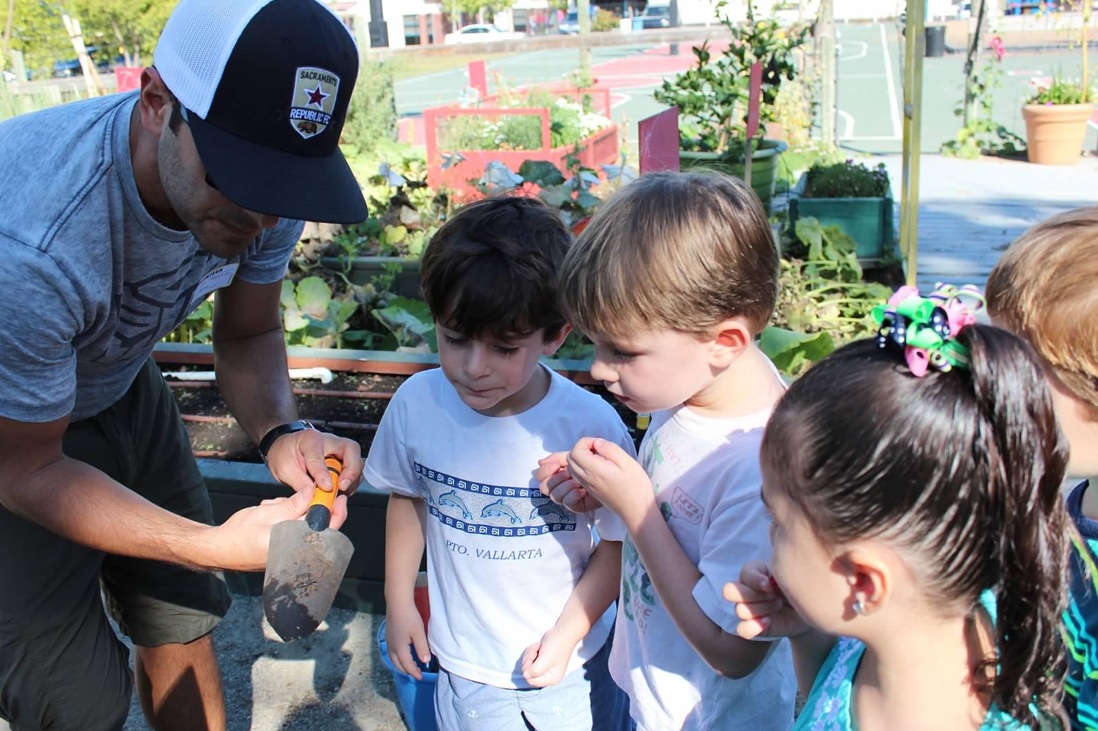 organic garden st michael u0027s episcopal day